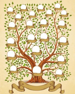בניית עץ משפחה