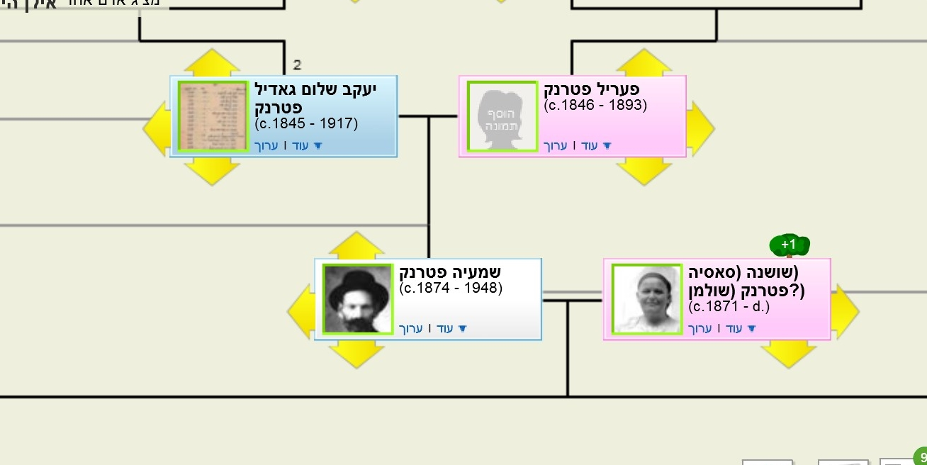 דוגמה לפרופיל בתוך עץ משפחה באתר Geni